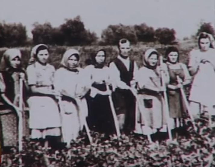 http://www.zlocininadsrbima.com/SLIKE/1946-1960/Baraganska-Golgota1.JPG